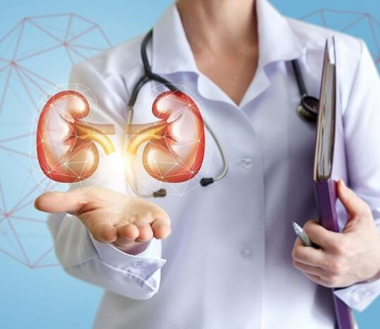 Foods That are Destroying Your Kidneys You Should Stop Eating
