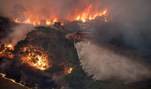 Pictures of Australian forest fires