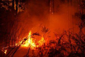 Australia bushfires - Pray for Australia