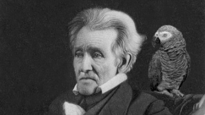 President Andrew Jackson's pet parrot - Weird History Facts