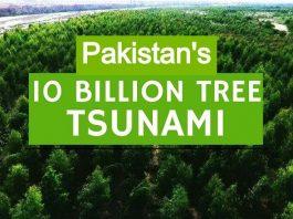 "Pakistan's ""10 Billion Tree Tsunami"" Has Transformed the Area in One Year"