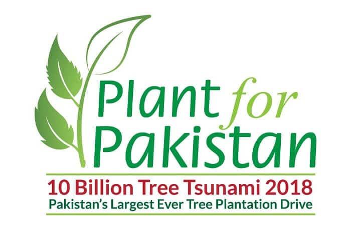 10 Billion Tree Tsunami