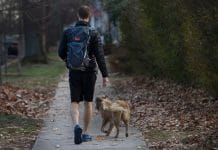 Meet the Man Walking around the World with His Dog